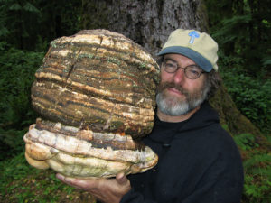 Medicinal Mushroom Hunting and Cancer