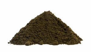 black-ant-extract-powder