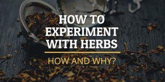 Experiment with herbs